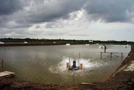aquaculture-fig3
