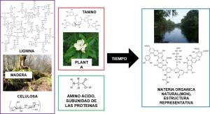 Las moléculas que forman a los seres vivos (plantas, animales, y micro-organismos) se pueden descomponer y unir para formar una mezcla compleja de moléculas químicas que se conoce como materia orgánica natural. La imagen fue modificada de las siguientes fuentes: 1, 2, 3, 4, 5, 6, 7, 8