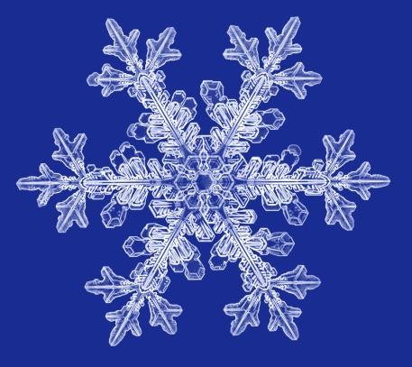 un cristal de nieve