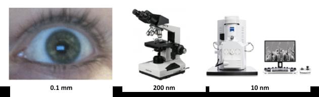 un ojo y microscopios