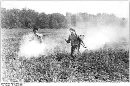 Blausig, Kartoffelkäferbekämpfung