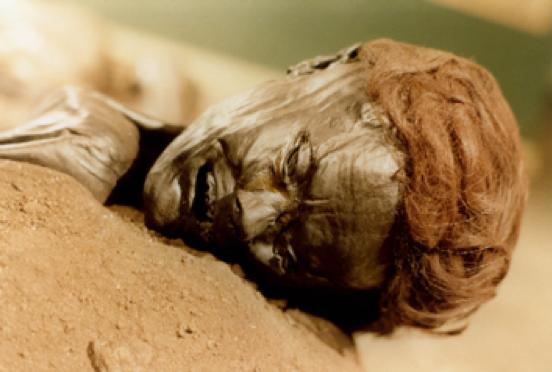 bog bodies.png