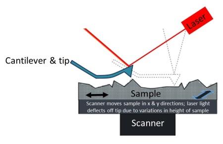 a punta de la sonda AFM traza la topografía de una superficie de muestra. Imagen modificada